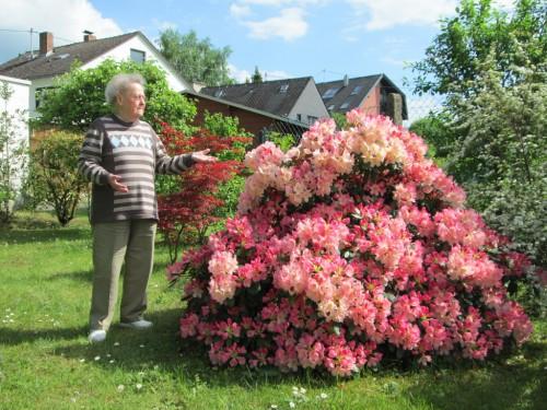 Hilde mit Rhododendron im Garten