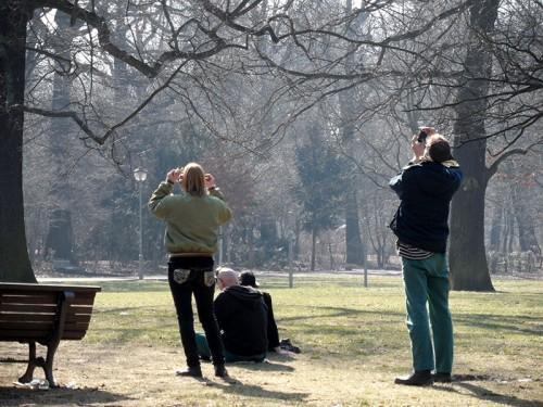 Menschen beobachten die Sonnenfinsternis - Berlin, März 2015